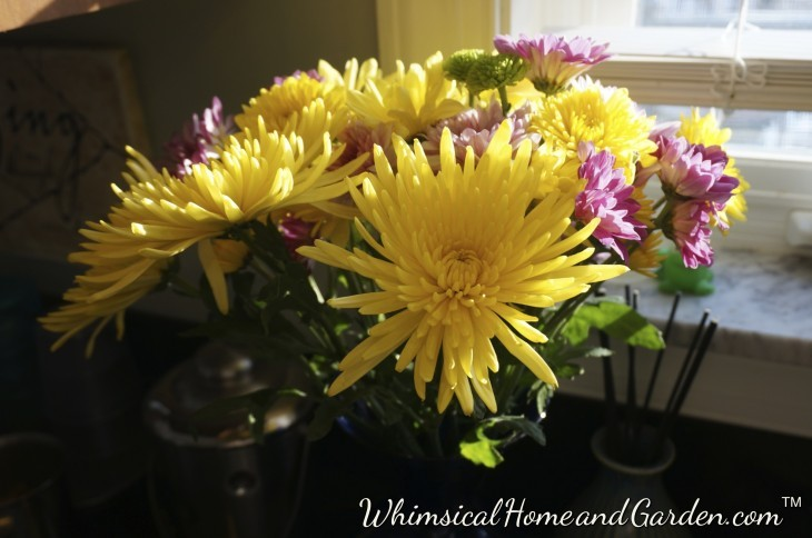 Flowers on a winter day.........