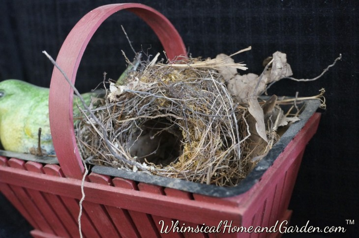 You can see just a bit of canine undercoat inside the nest on the left side.