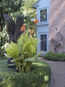 An interesting example of a tropical garden area in a traditional setting. Huge visual impact.