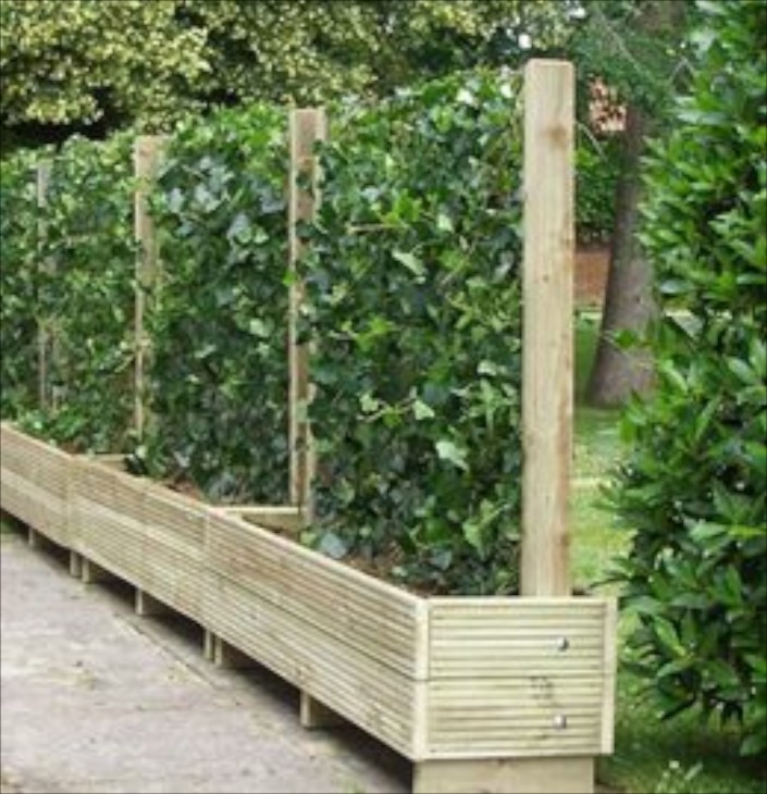 I live in florida and want to make a privacy fence using for Privacy wall planter