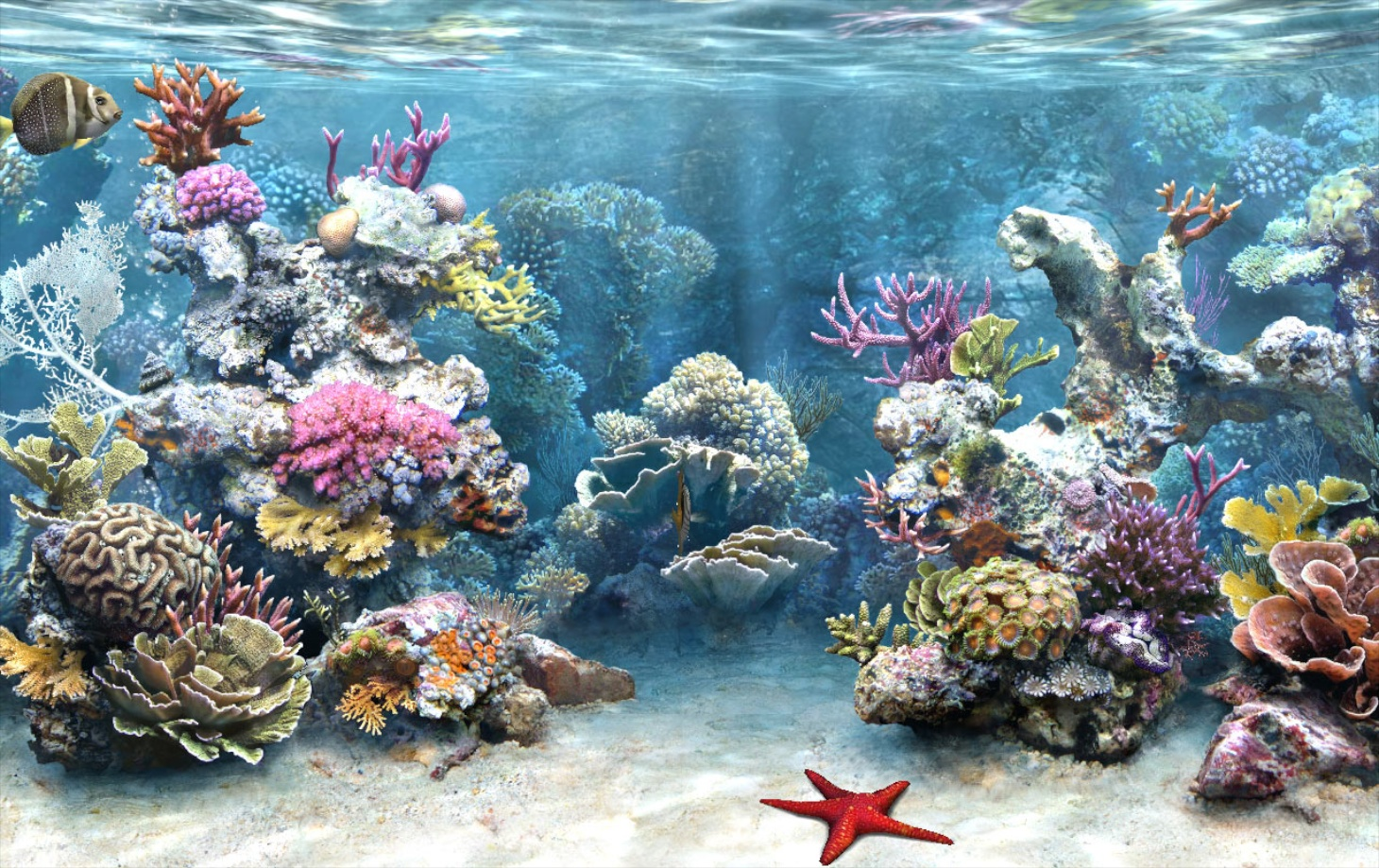 34_Amazing-3D-Aquarium-background_WHG